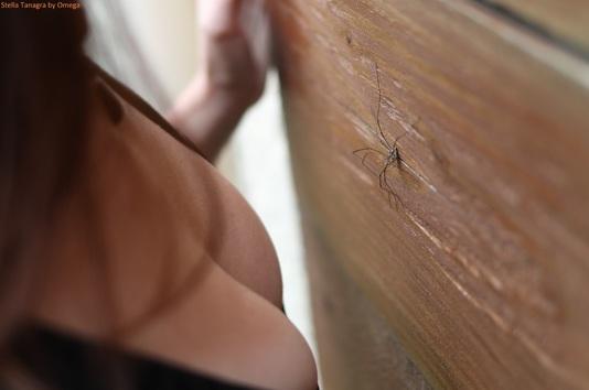 Femme sexy avec une araignée - décolleté profond