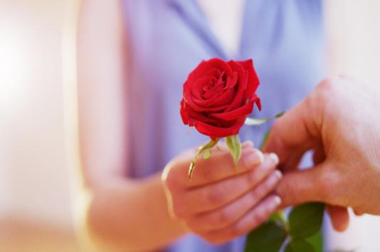 homme donne une rose a une femme